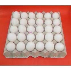 Cartón 30 Huevos Clase L Blanco