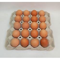 Cartón 20 Huevos Clase XL Moreno